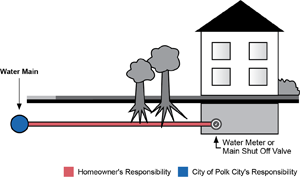 Homeowner's Responsibility