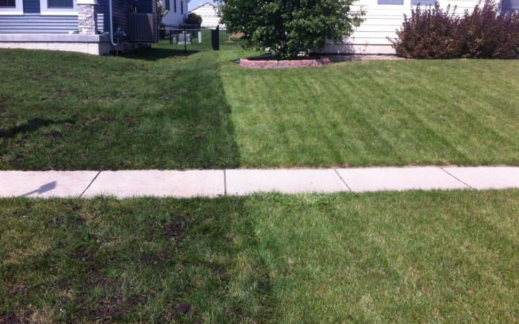 before and after lawn